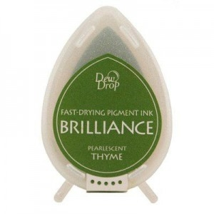 Brilliance Dew Drop Thyme